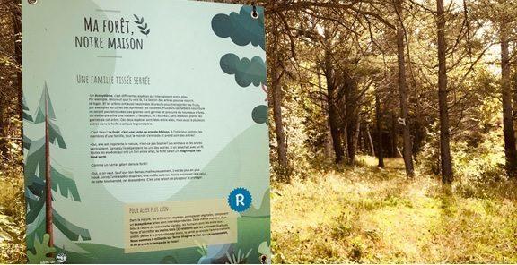 Lancement de l'éco-rallye Ma forêt, notre maison dans les sentiers forestiers de Rimouski-Neigette